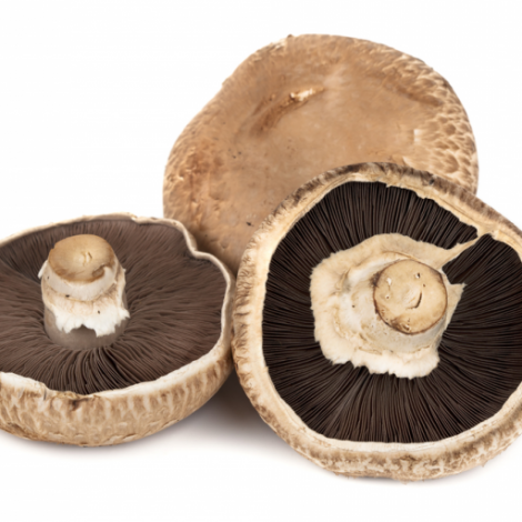 Cogumelo Portobello 200g